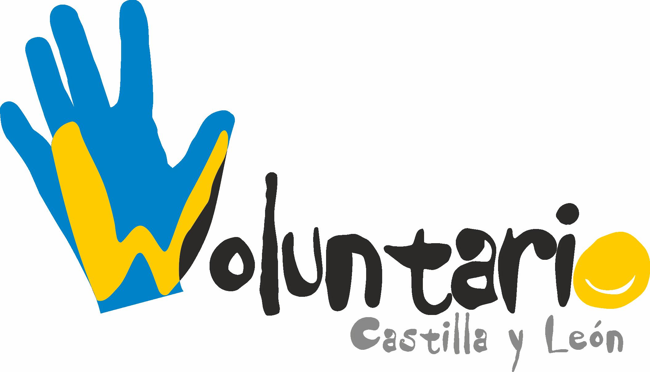 Curso / Taller de Voluntariado para Jóvenes con sindrome de Down y DI